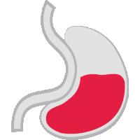Gastroenterologi-Urologi