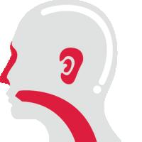 Telinga, Hidung & Tenggorokan